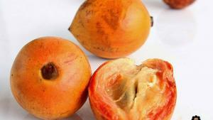 6 Health Benefits of African White Star Apple